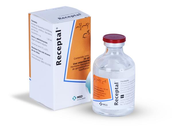 Magvak petrezselyem a prostatitis receptből)